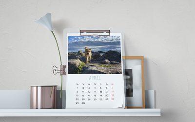 5 vragen als je zelf een kalender maakt