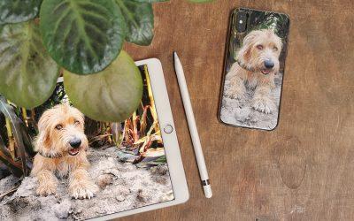 Welk smartphonehoesje kies ik?