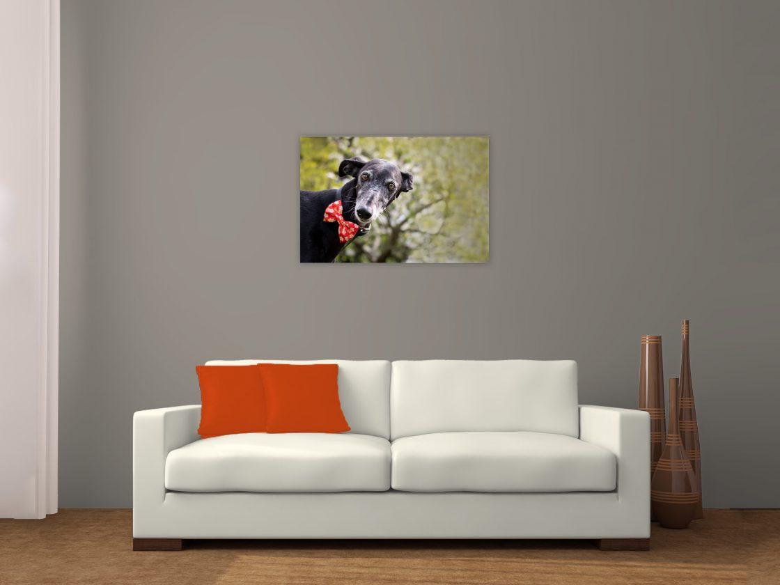 wall-art hond