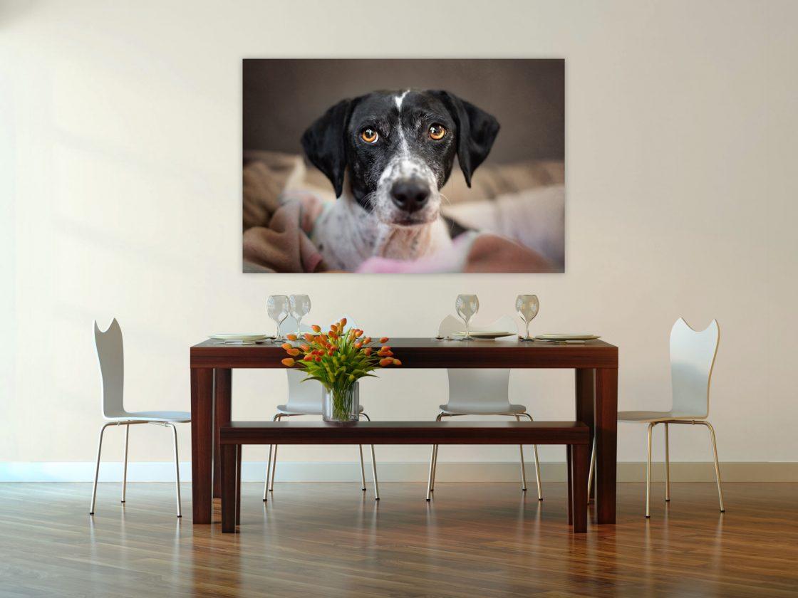wall-art hondenportret