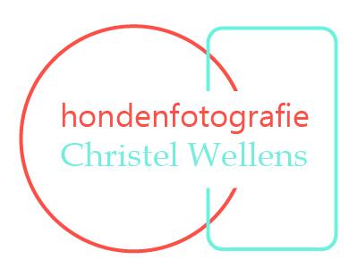 Hondenfotografie Christel Wellens